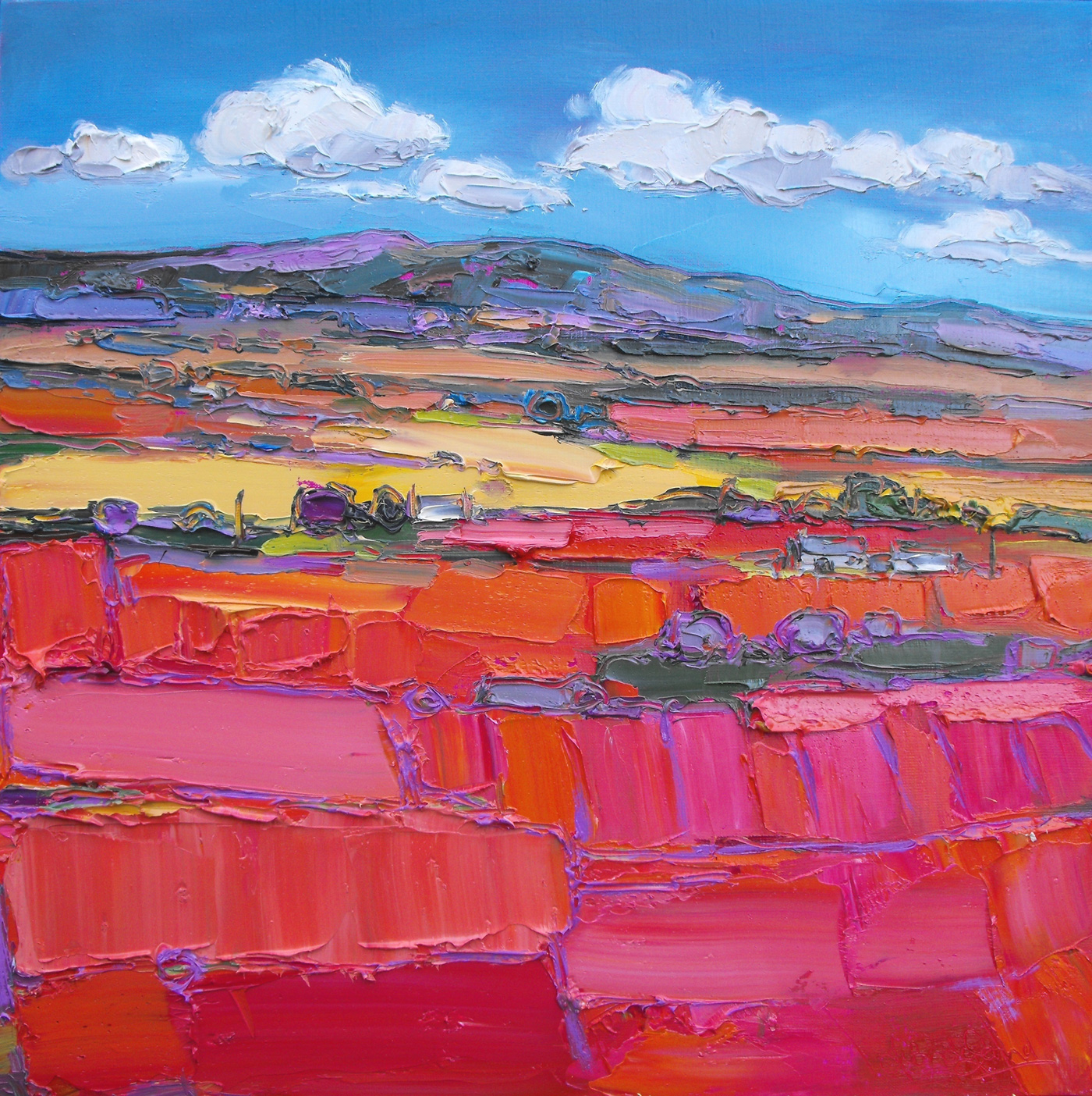 Ploughed Fields and Cottages, Aberdeenshire by  Judith Bridgland