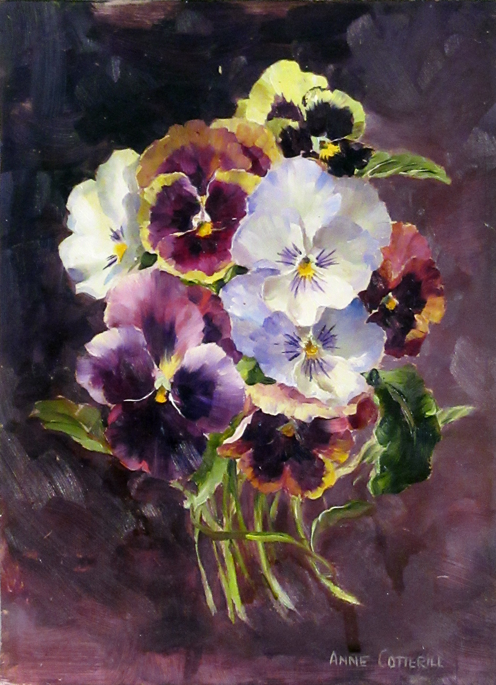 Pansies II by  Anne Cotterill (1933-2010)