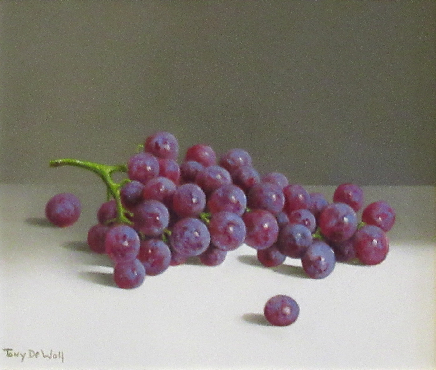 Grapes by  Tony de Wolf