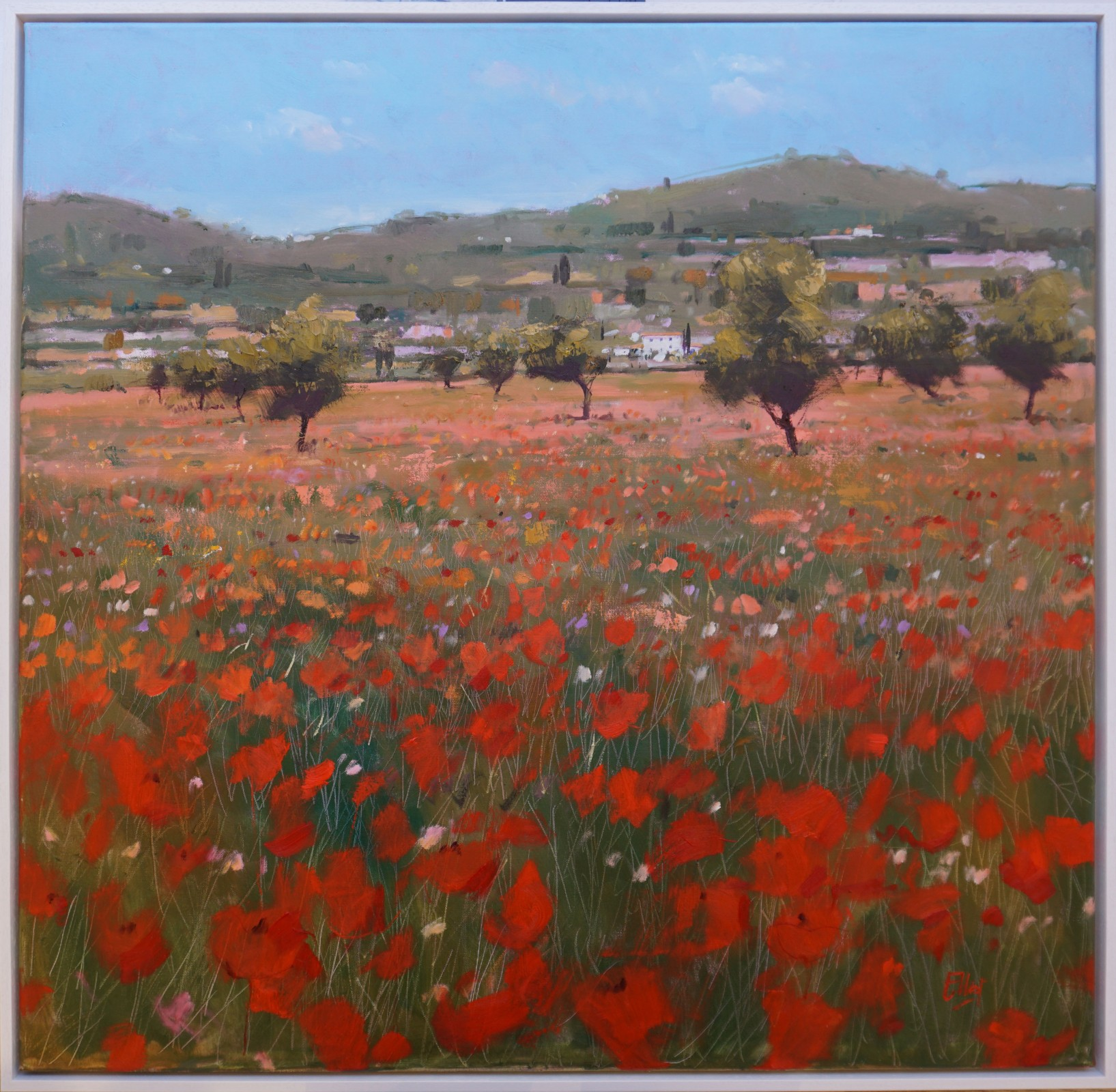Wild Meadow in Bloom, Mallorca by  Ian Elliot