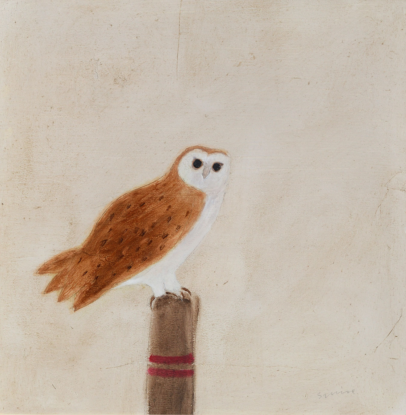 Barn Owl 2020 by  Andrew Squire