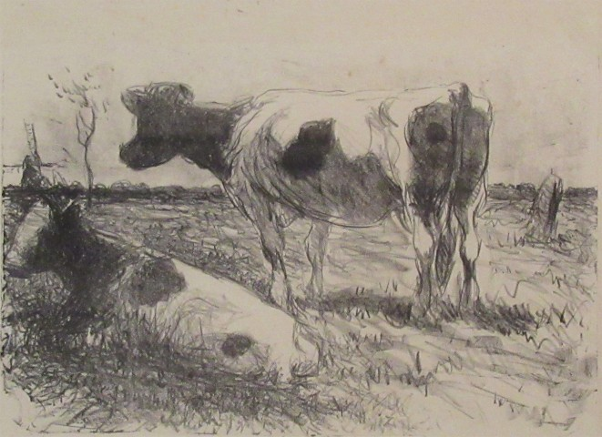 Two Cows, Low Countries, circa 1910