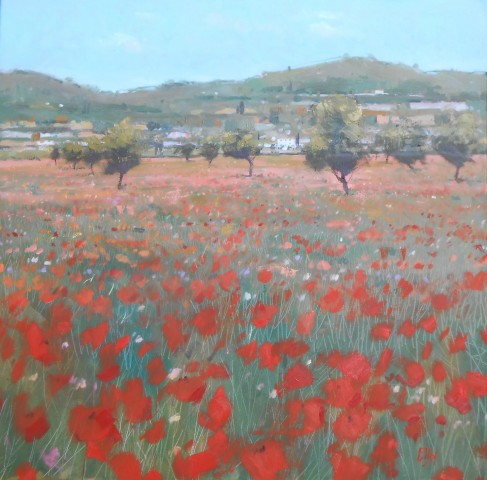 Wild Meadow in Bloom, Mallorca