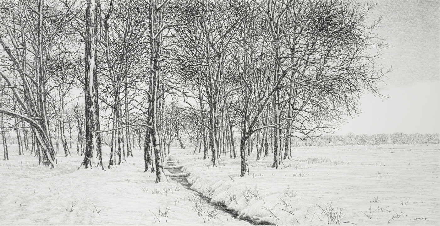 A Walk through Winter Trees by  Roy Wright